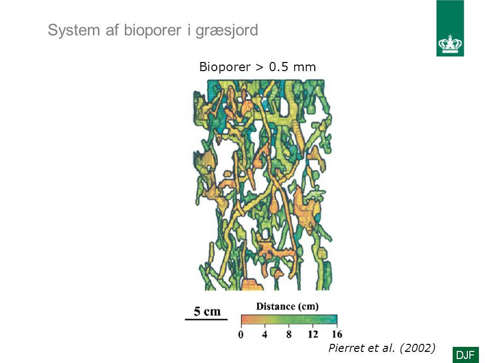 System af bioporer i græsjord