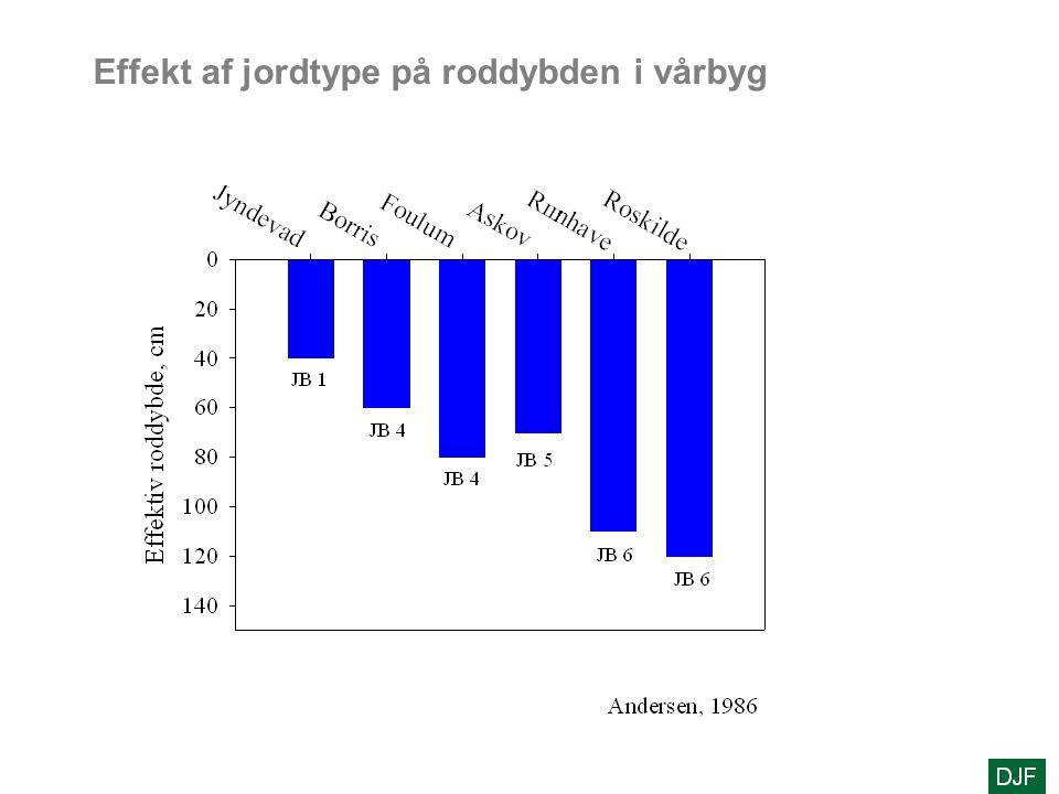 Effekt af jordtype på roddybden i vårbyg