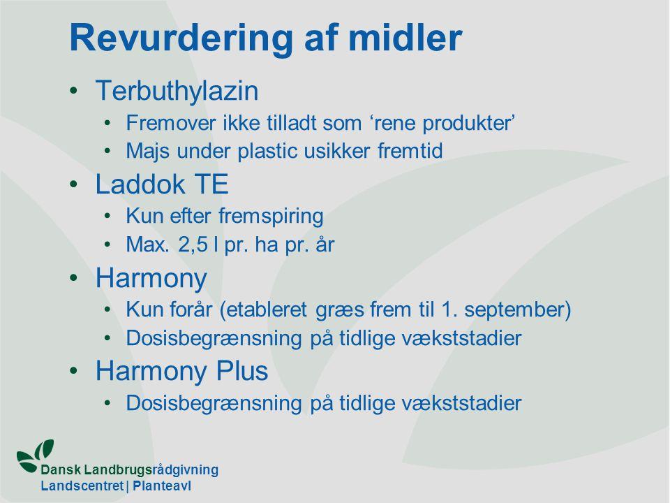 Revurdering af midler Terbuthylazin Laddok TE Harmony Harmony Plus