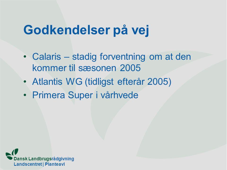 Godkendelser på vej Calaris – stadig forventning om at den kommer til sæsonen 2005. Atlantis WG (tidligst efterår 2005)