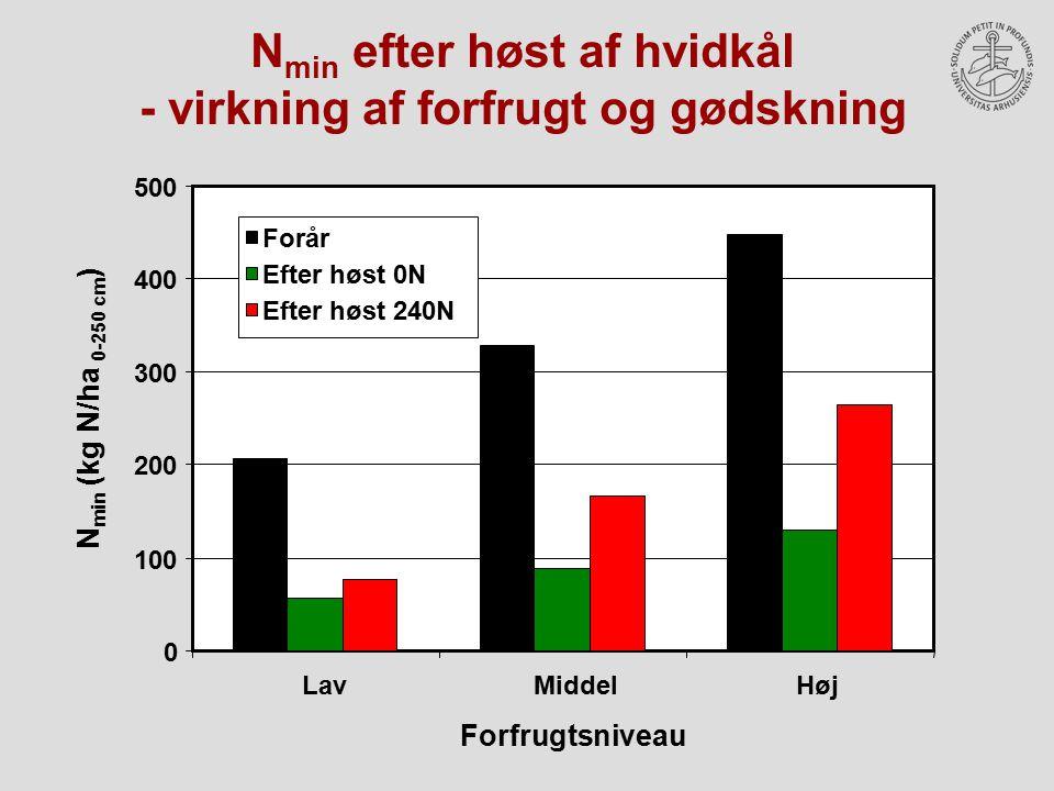 Nmin efter høst af hvidkål - virkning af forfrugt og gødskning
