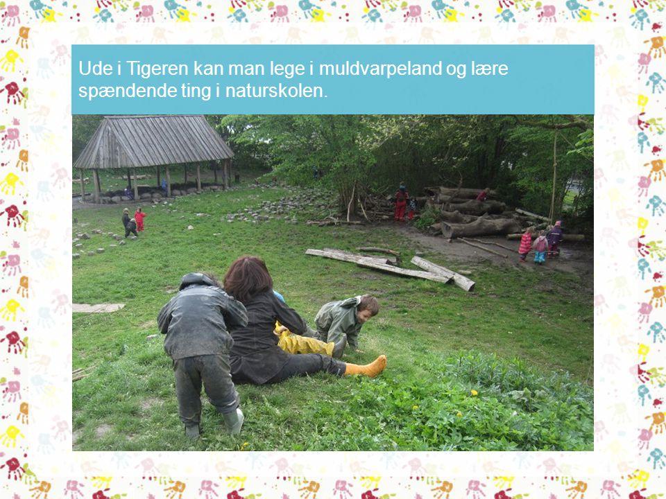 Ude i Tigeren kan man lege i muldvarpeland og lære spændende ting i naturskolen.