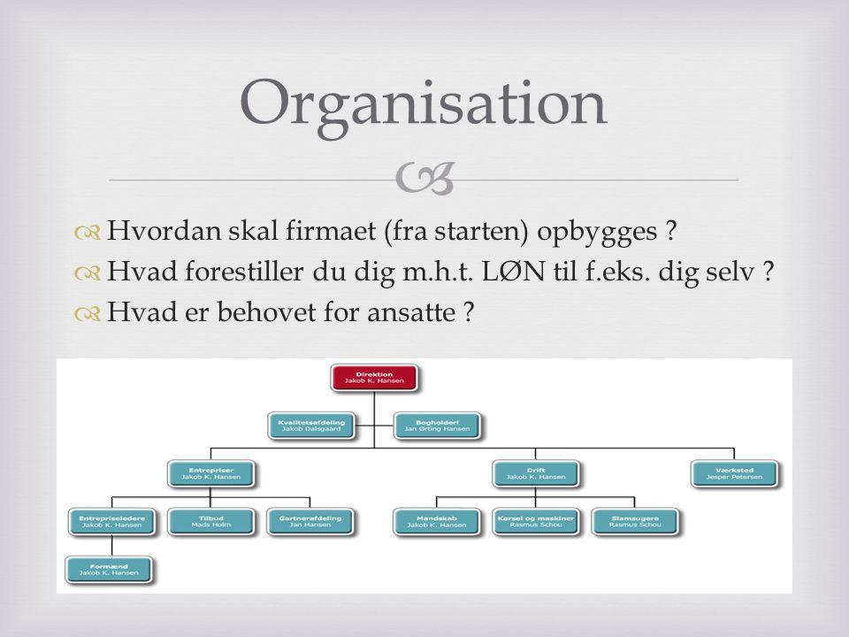 Organisation Hvordan skal firmaet (fra starten) opbygges