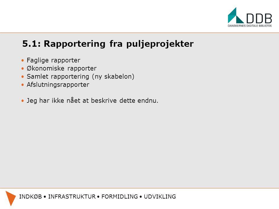 5.1: Rapportering fra puljeprojekter