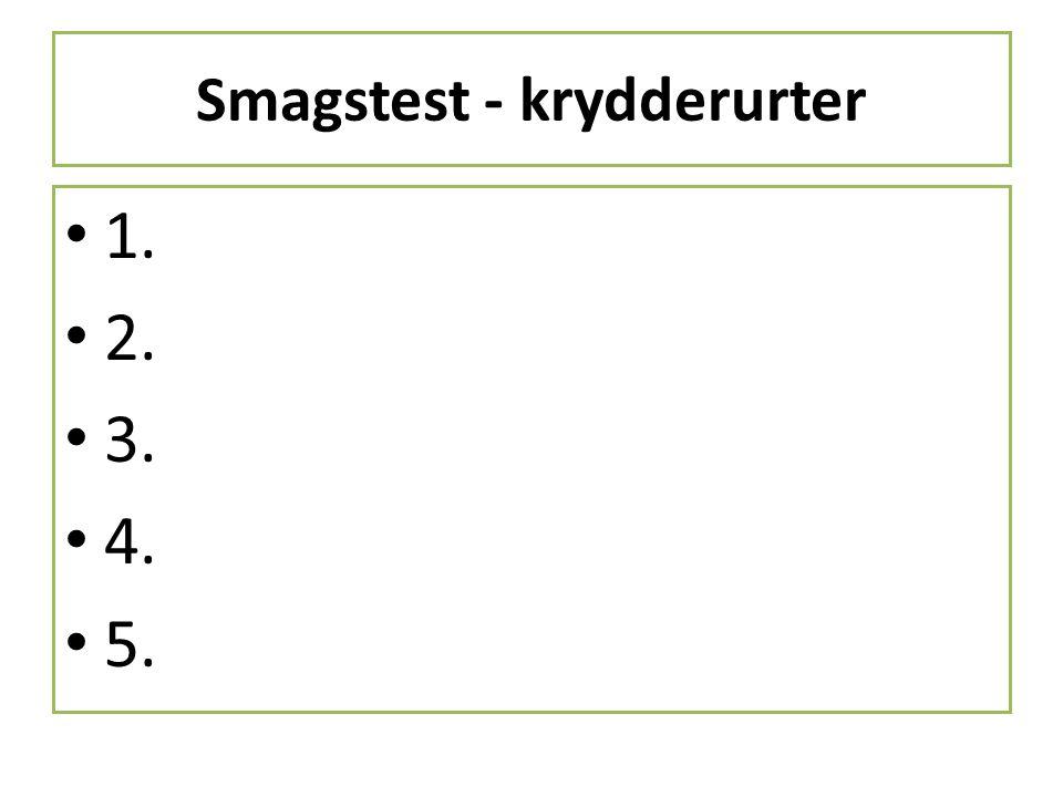 Smagstest - krydderurter