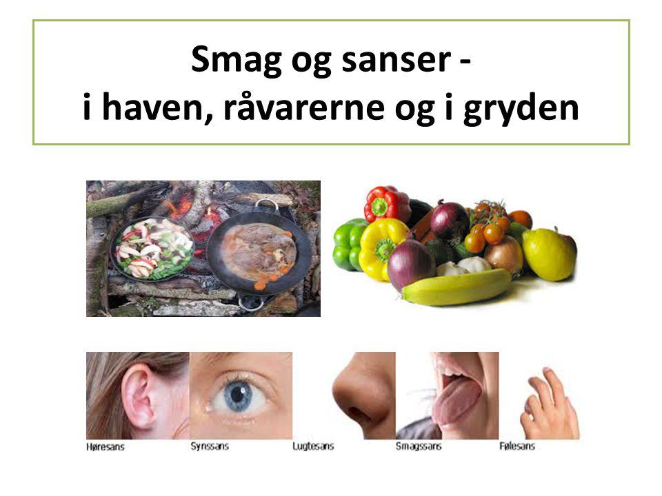 Smag og sanser - i haven, råvarerne og i gryden