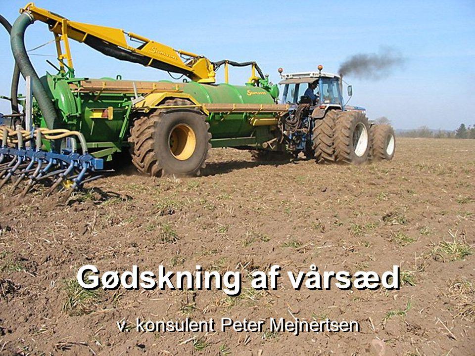 v. konsulent Peter Mejnertsen