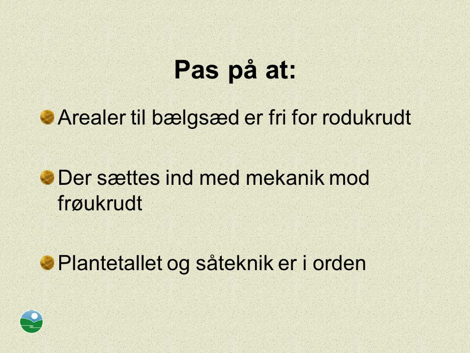 Pas på at: Arealer til bælgsæd er fri for rodukrudt