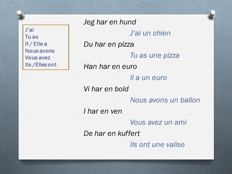 Jeg har en hund J'ai un chien Du har en pizza Tu as une pizza Han har en euro Il a un euro Vi har en bold Nous avons un ballon I har en ven Vous avez un ami De har en kuffert Ils ont une valise