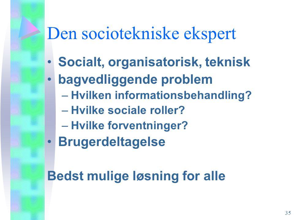 Den sociotekniske ekspert