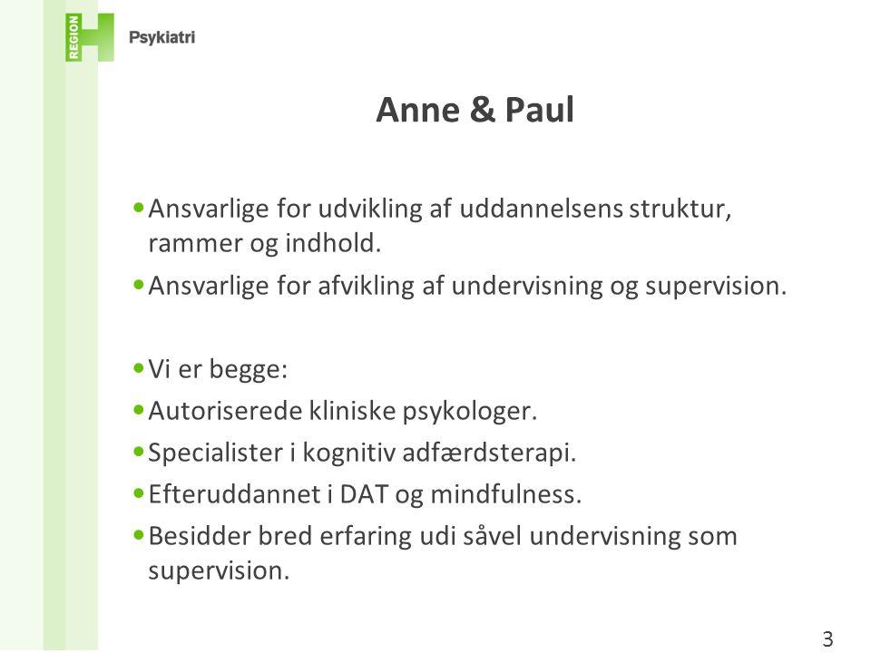 Anne & Paul Ansvarlige for udvikling af uddannelsens struktur, rammer og indhold. Ansvarlige for afvikling af undervisning og supervision.