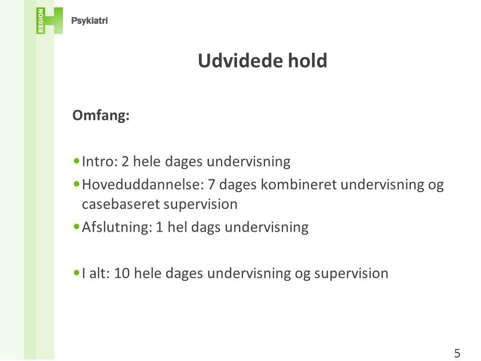 Udvidede hold Omfang: Intro: 2 hele dages undervisning
