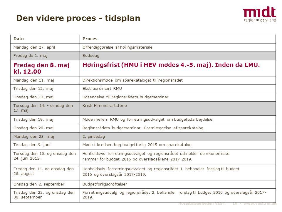 Den videre proces - tidsplan