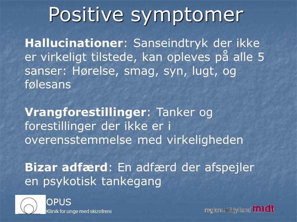 Positive symptomer Hallucinationer: Sanseindtryk der ikke er virkeligt tilstede, kan opleves på alle 5 sanser: Hørelse, smag, syn, lugt, og følesans.