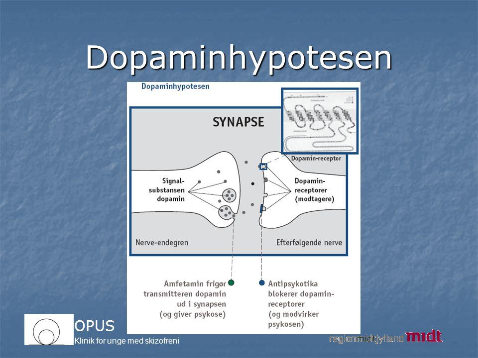 Dopaminhypotesen