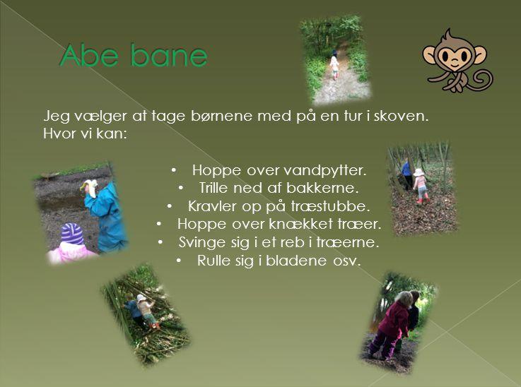 Abe bane Jeg vælger at tage børnene med på en tur i skoven.