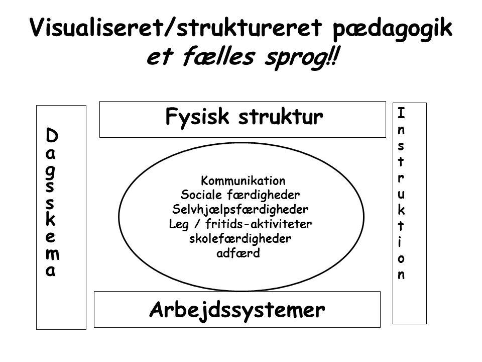Visualiseret/struktureret pædagogik et fælles sprog!!