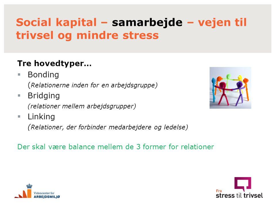 Social kapital – samarbejde – vejen til trivsel og mindre stress
