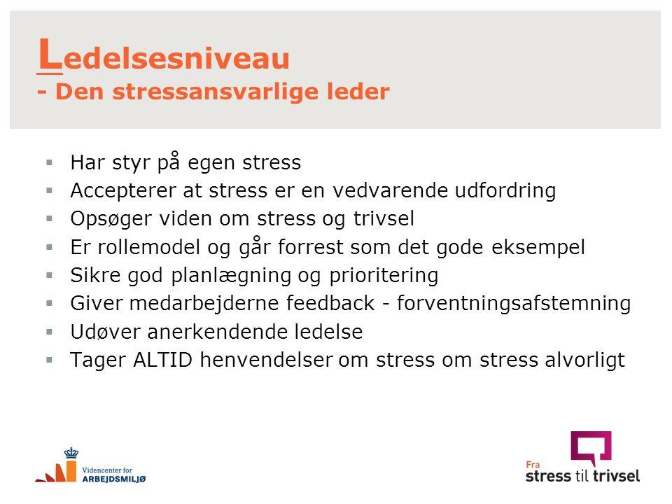 Ledelsesniveau - Den stressansvarlige leder