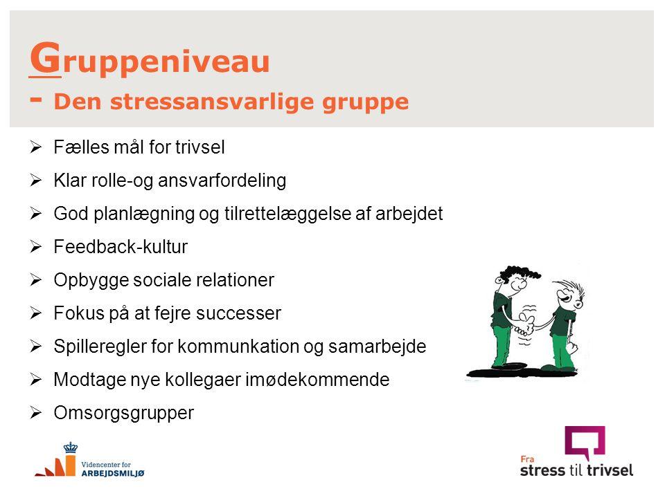 Gruppeniveau - Den stressansvarlige gruppe