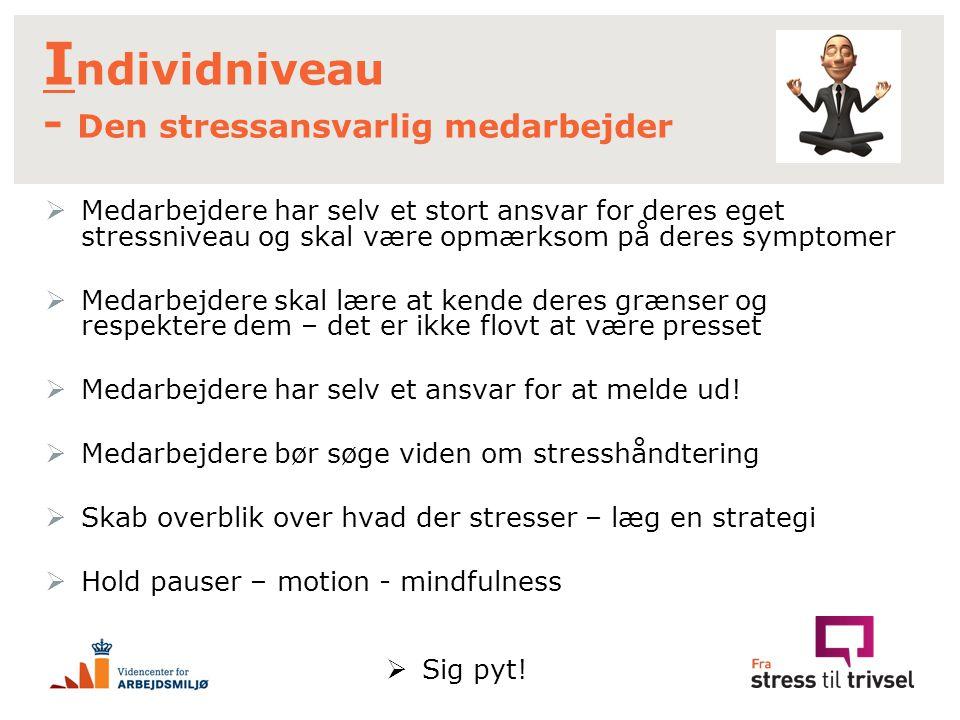 Individniveau - Den stressansvarlig medarbejder