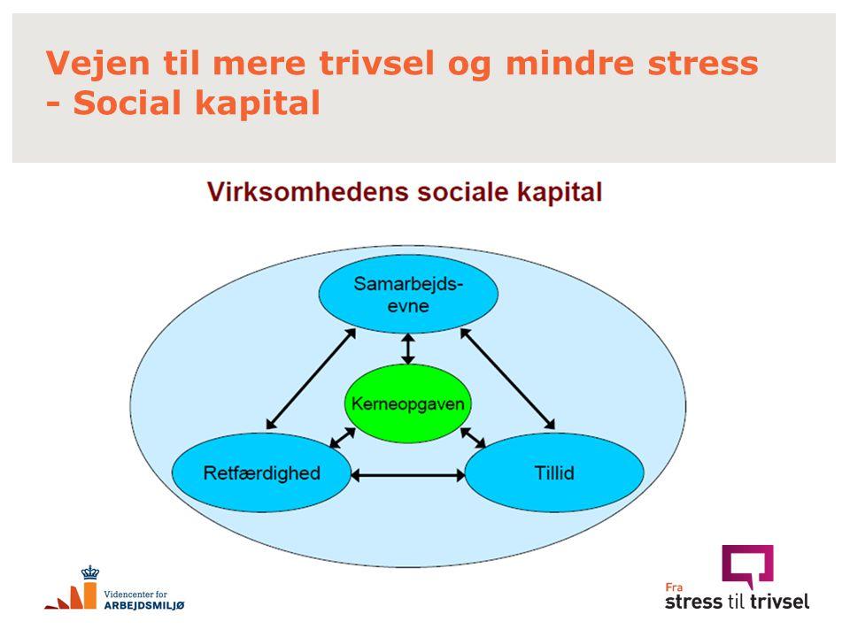Vejen til mere trivsel og mindre stress - Social kapital