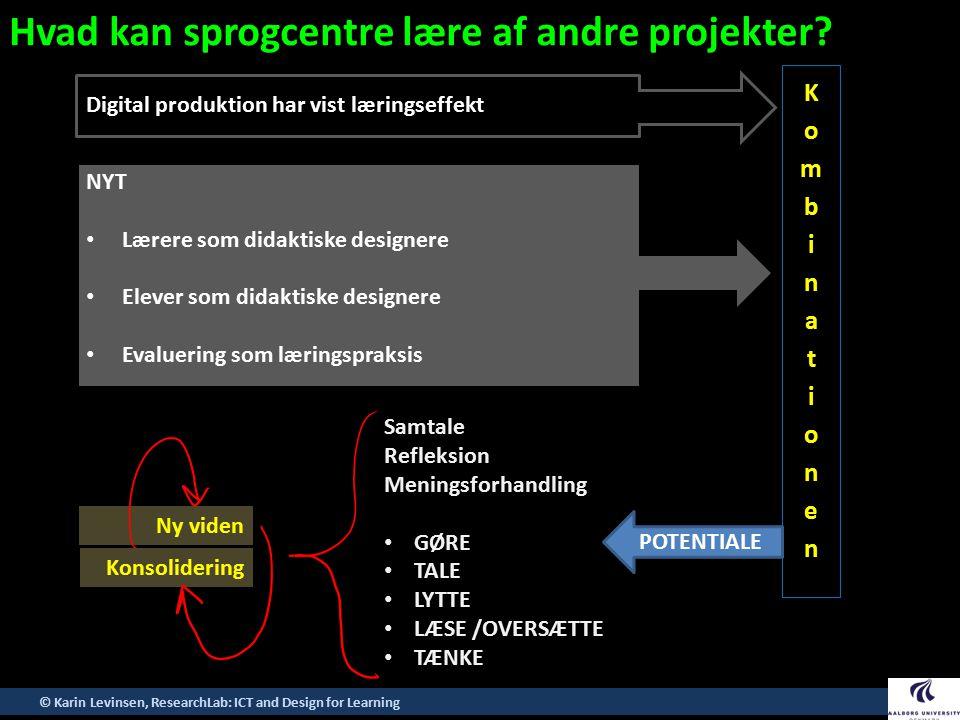 Hvad kan sprogcentre lære af andre projekter