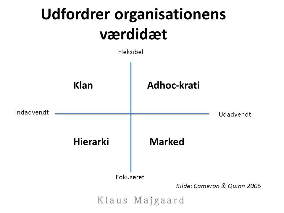 Udfordrer organisationens værdidæt