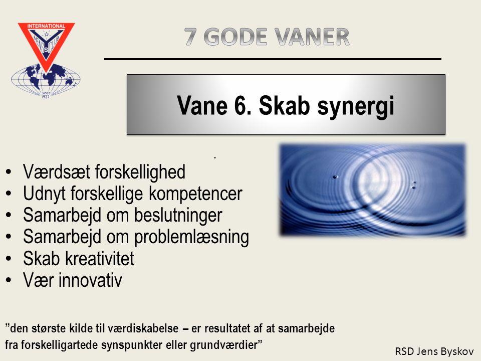 7 GODE VANER Vane 6. Skab synergi Værdsæt forskellighed