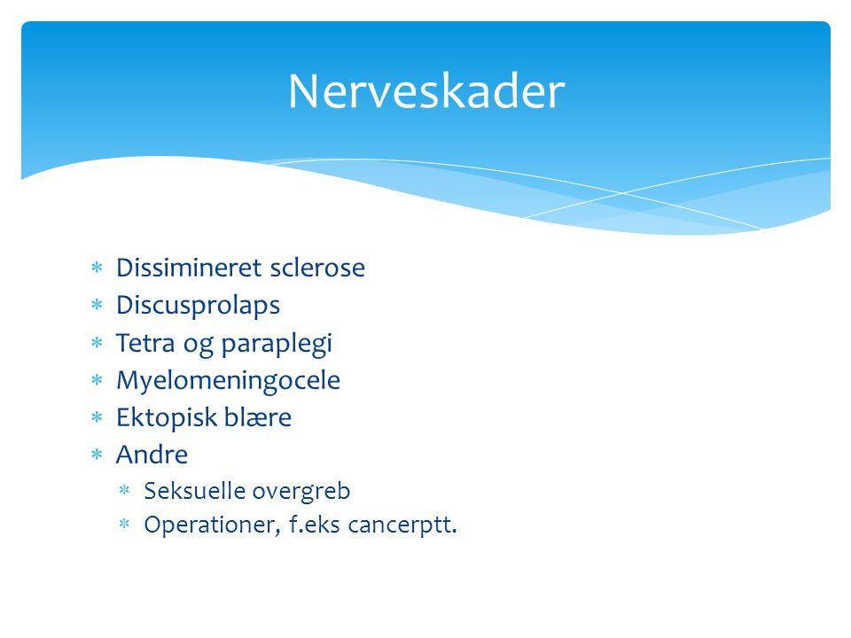 Nerveskader Dissimineret sclerose Discusprolaps Tetra og paraplegi