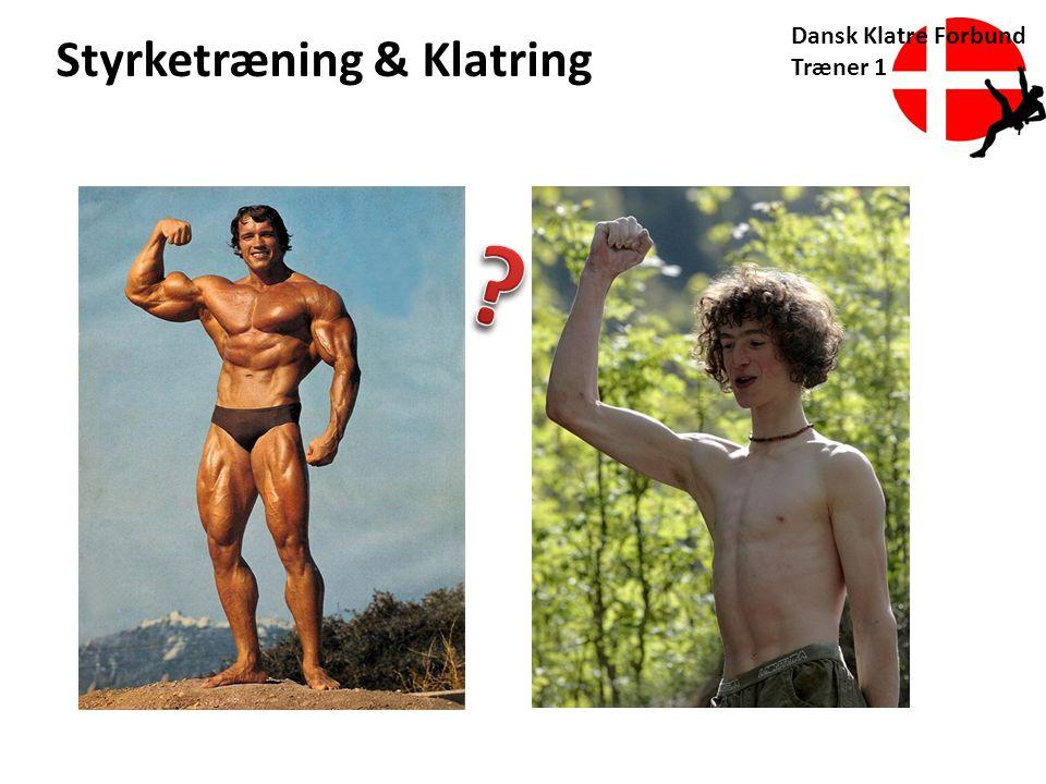 Dansk Klatre Forbund Træner 1