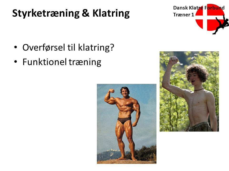 Styrketræning & Klatring