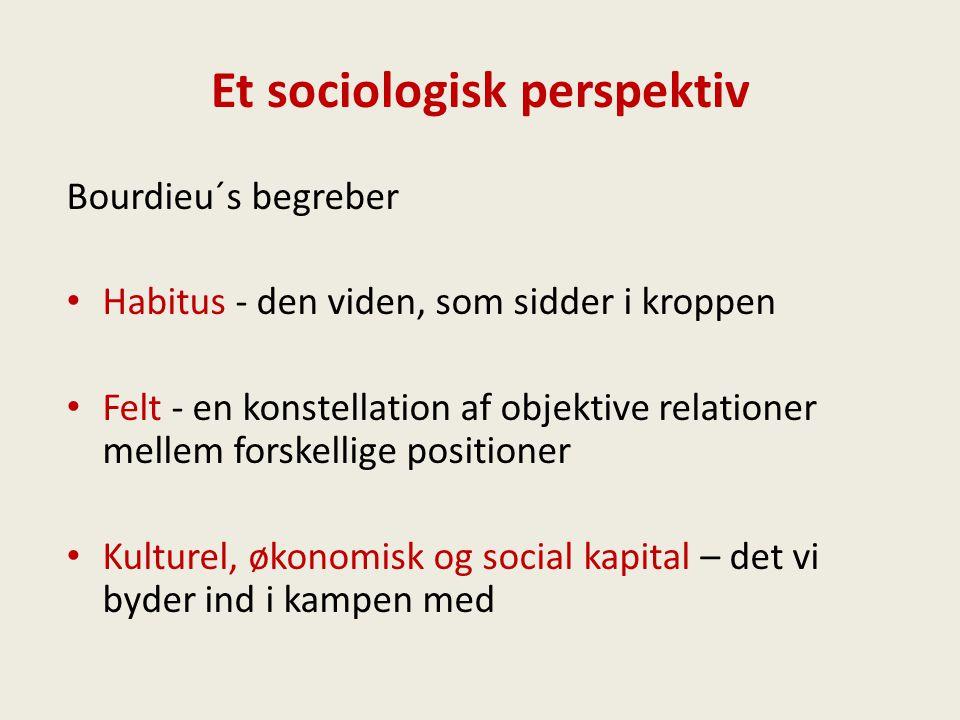Et sociologisk perspektiv