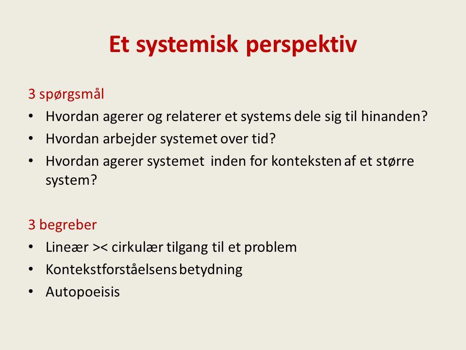 Et systemisk perspektiv