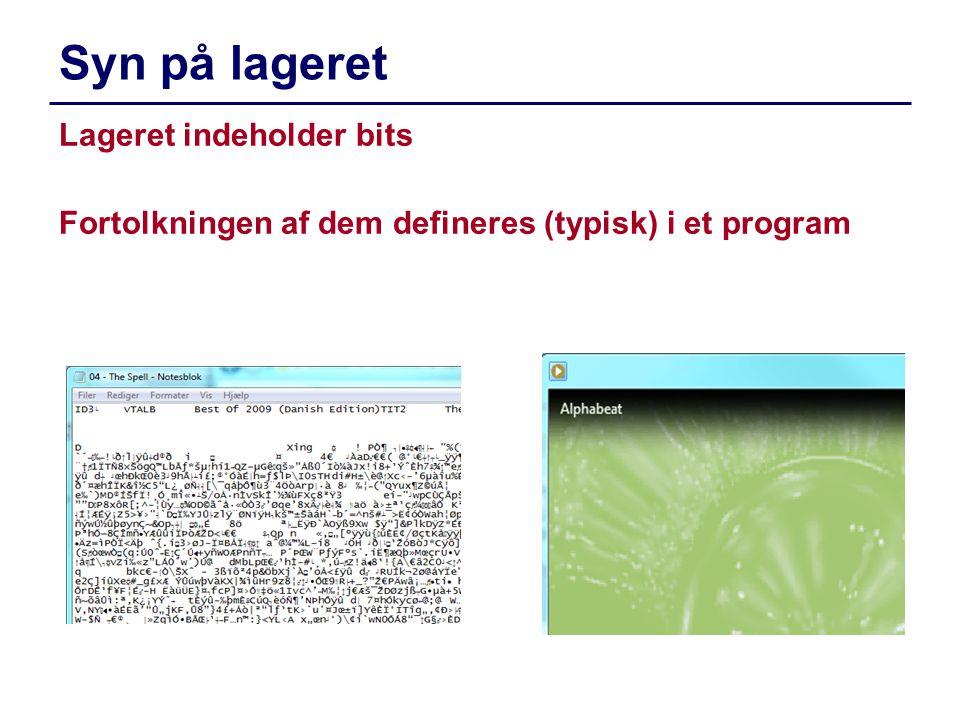 Syn på lageret Lageret indeholder bits Fortolkningen af dem defineres (typisk) i et program