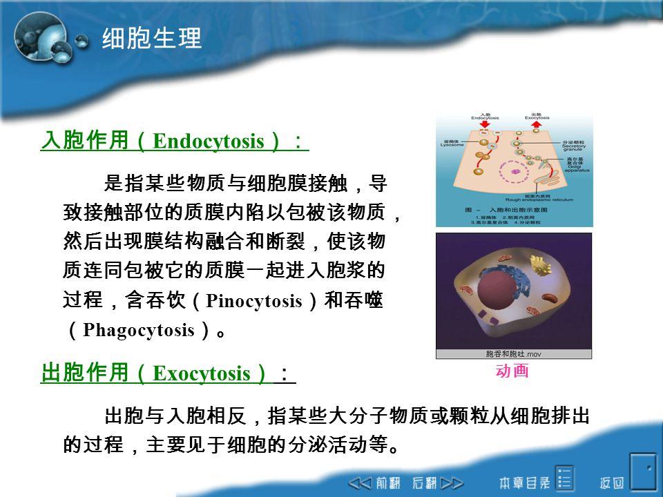 细胞生理 入胞作用(Endocytosis): 出胞作用(Exocytosis):