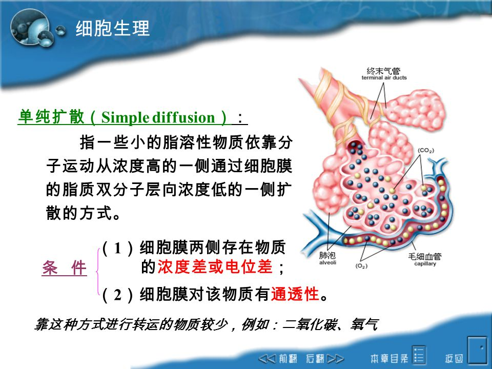 细胞生理 单纯扩散(Simple diffusion):