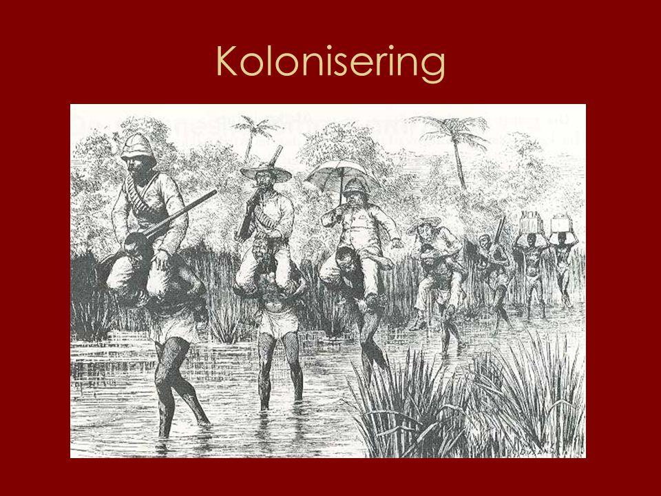 Kolonisering