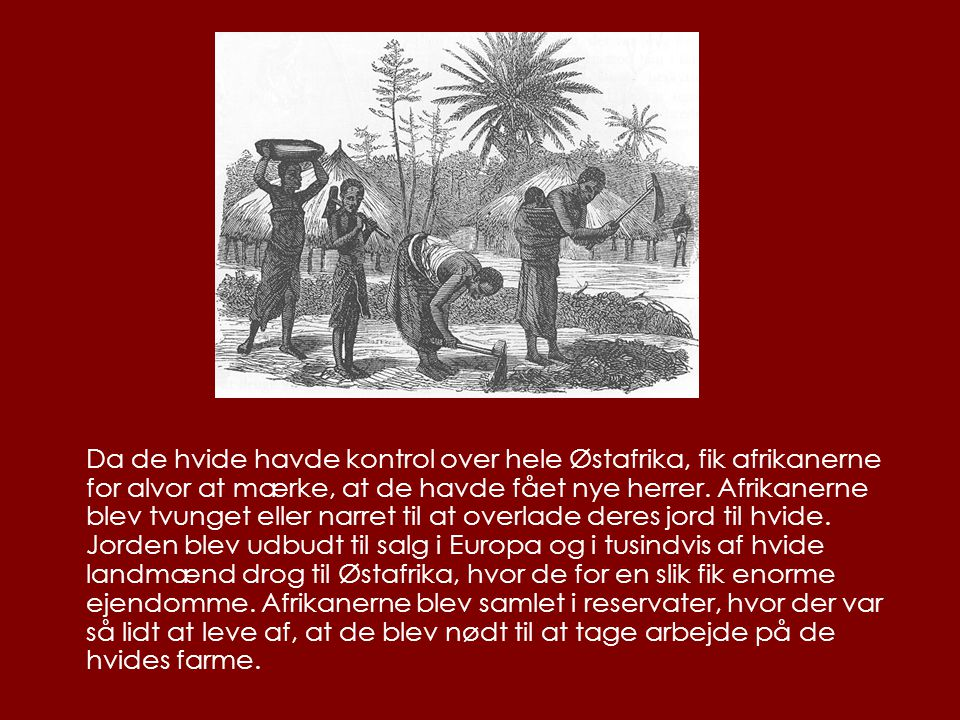 Da de hvide havde kontrol over hele Østafrika, fik afrikanerne for alvor at mærke, at de havde fået nye herrer.