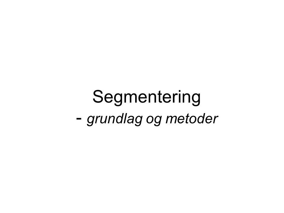 Segmentering - grundlag og metoder