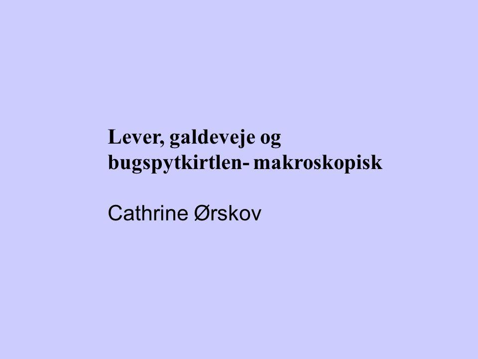 Lever, galdeveje og bugspytkirtlen- makroskopisk Cathrine Ørskov