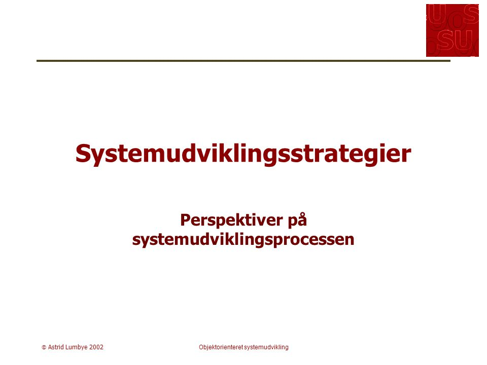 Systemudviklingsstrategier