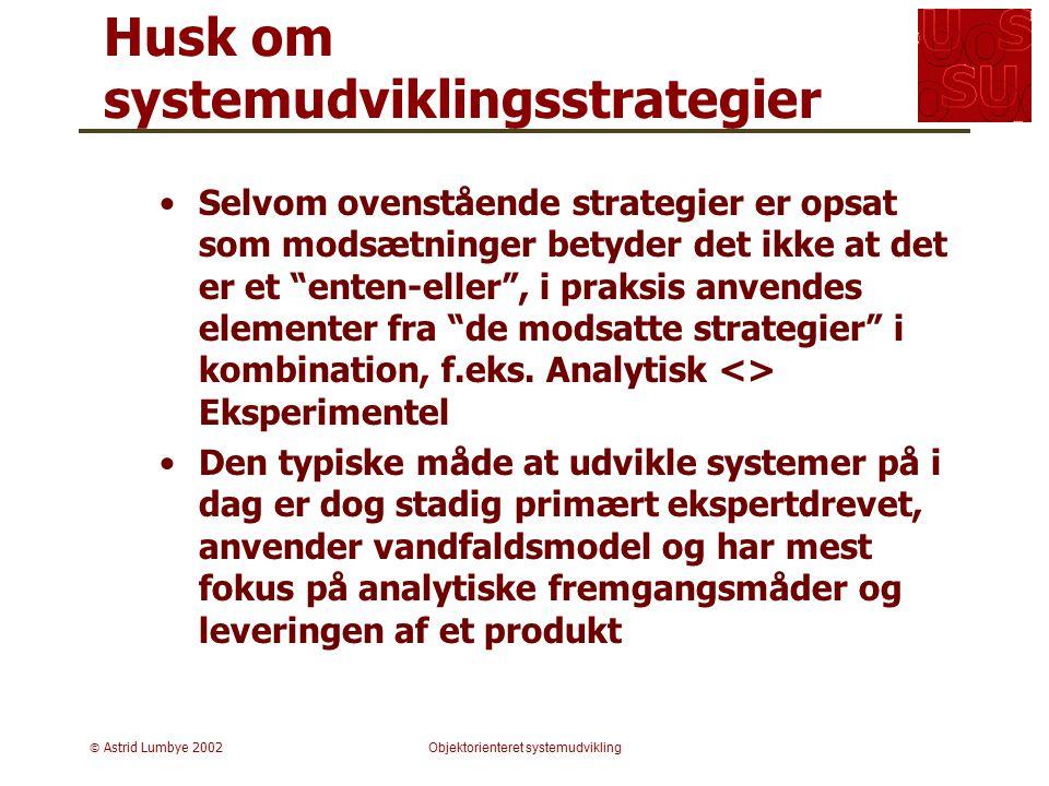 Husk om systemudviklingsstrategier