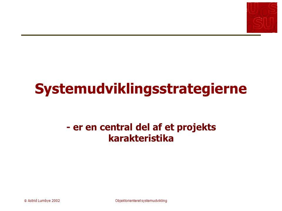 Systemudviklingsstrategierne