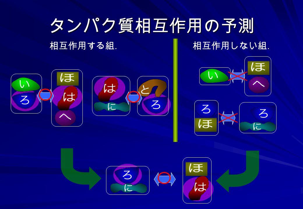 タンパク質相互作用の予測 相互作用する組. 相互作用しない組.