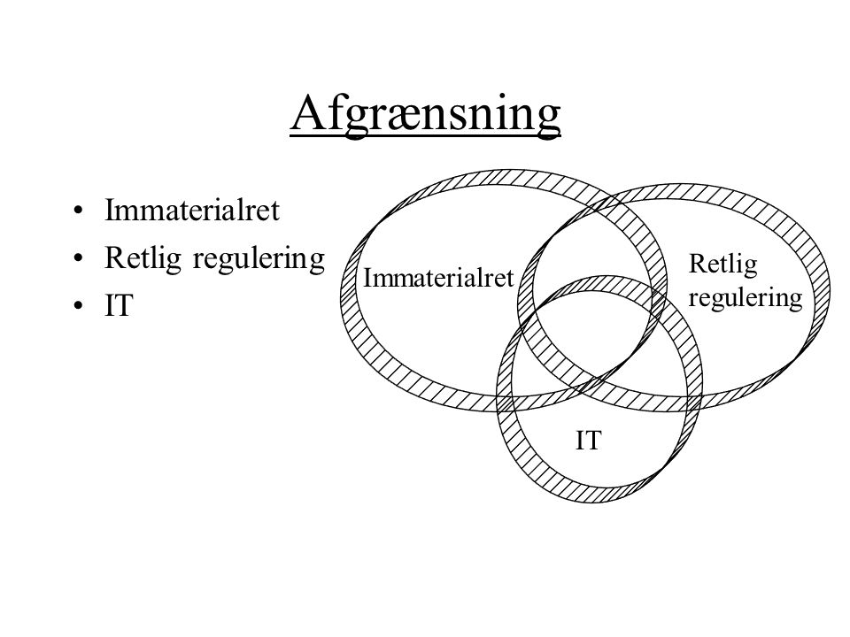 Afgrænsning Immaterialret Retlig regulering IT Retlig Immaterialret