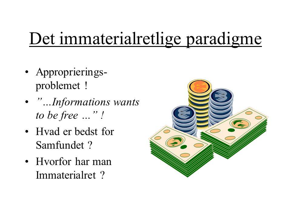 Det immaterialretlige paradigme