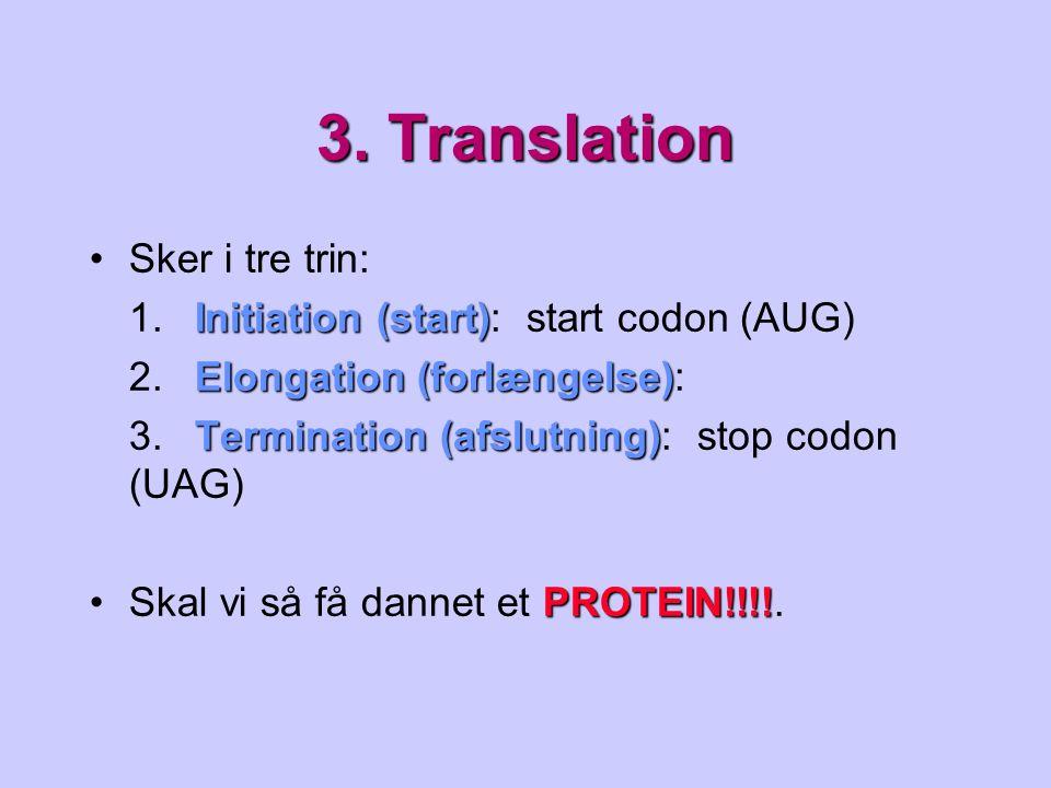 3. Translation Sker i tre trin: