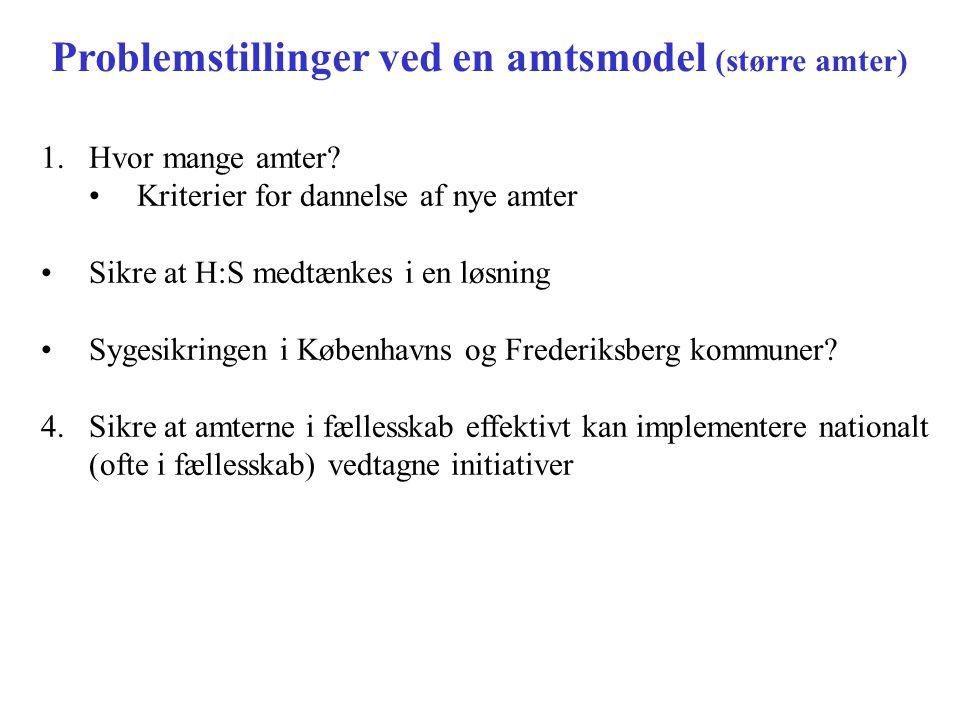 Problemstillinger ved en amtsmodel (større amter)