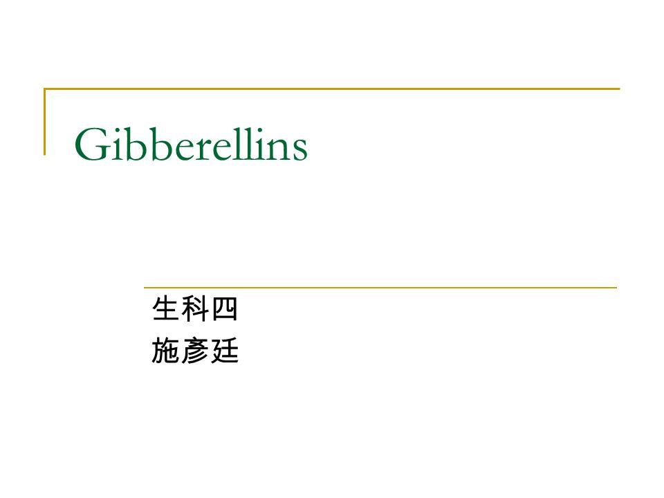 Gibberellins 生科四 施彥廷